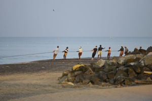 Varkala- Fisherman pulling the nets out in the morning