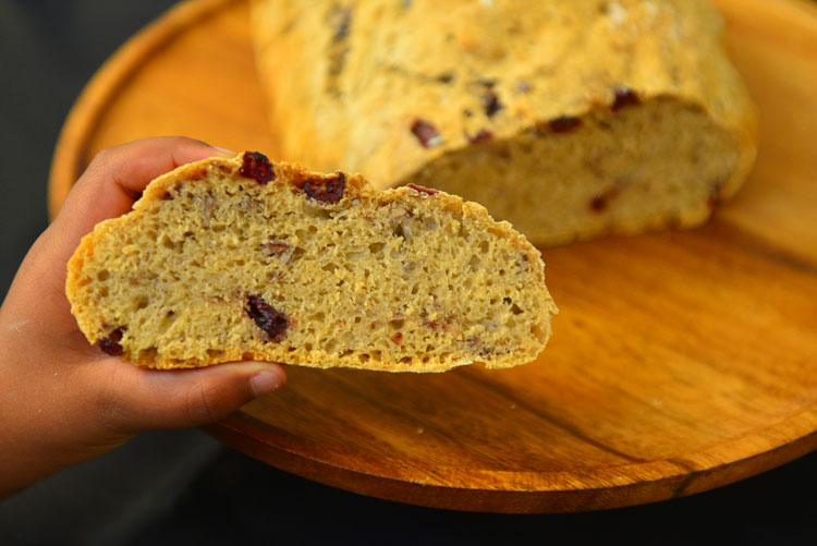 Cranberry Walnut NoKnead Bread