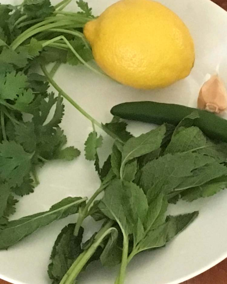 Ingredients for Cilantro Lemon Chicken Skewer mariande