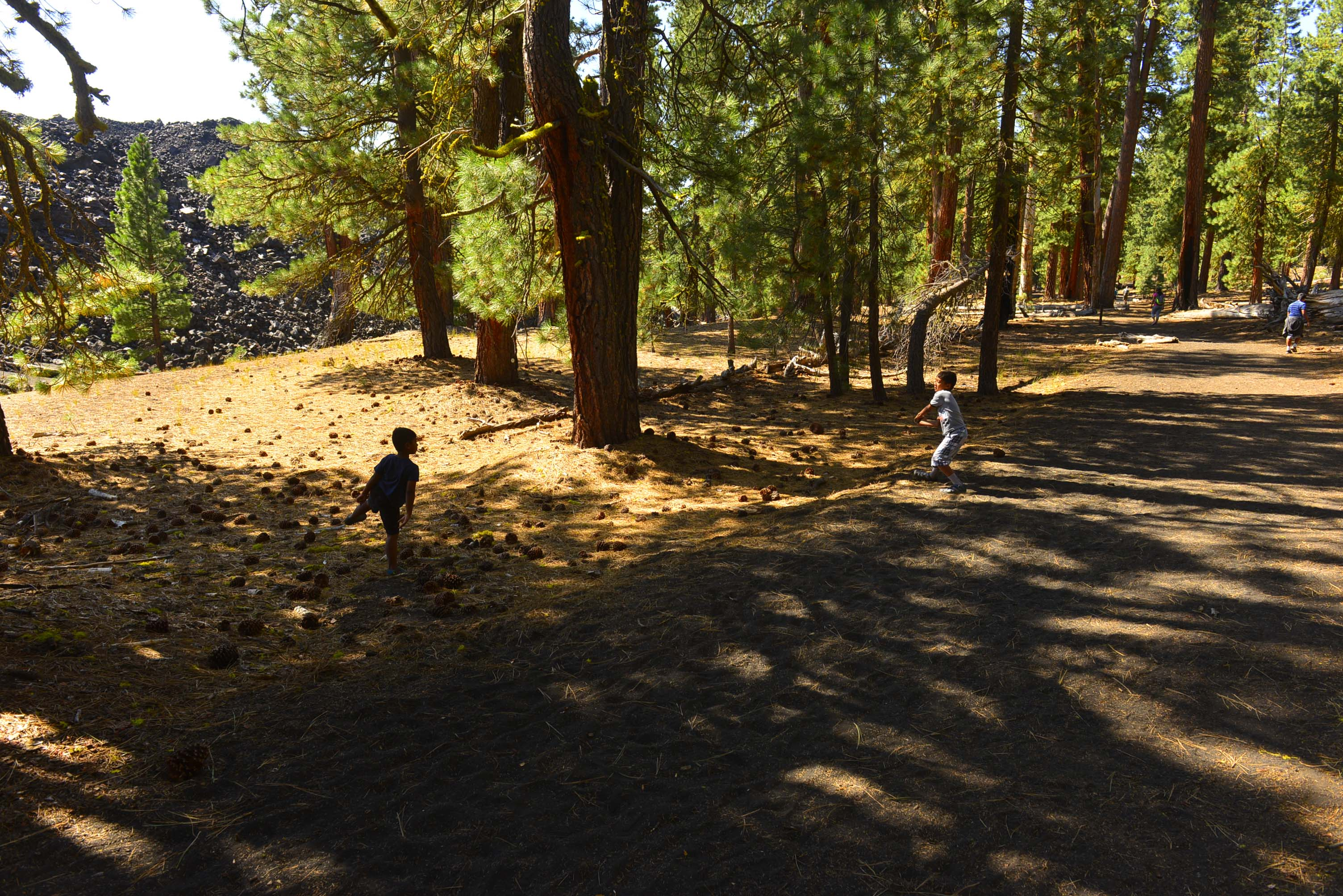Cinder Cone Trail