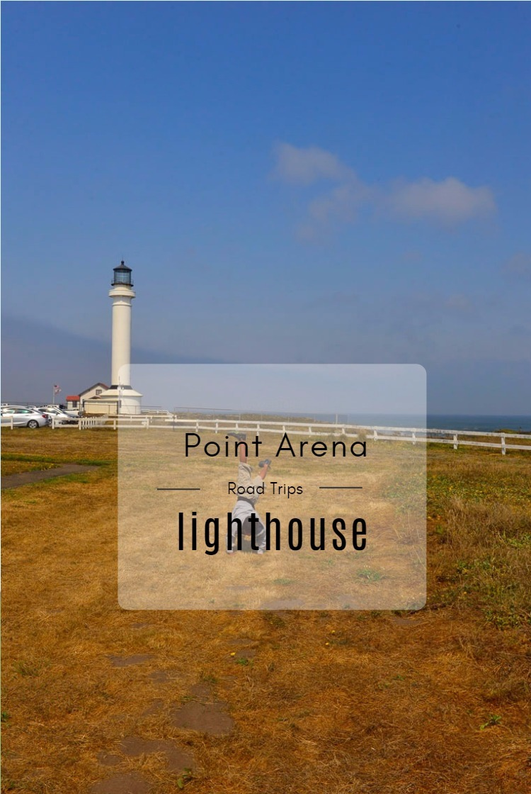 Visit Point Arena