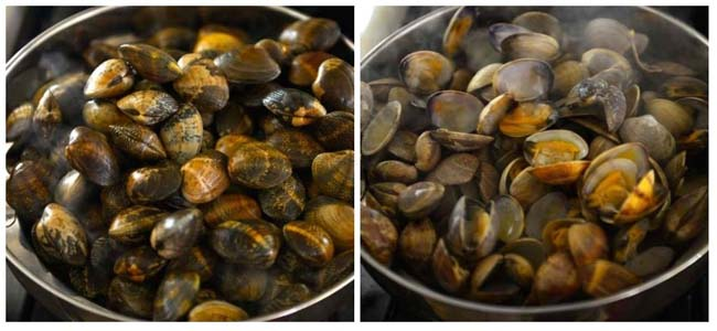 Steaming clams