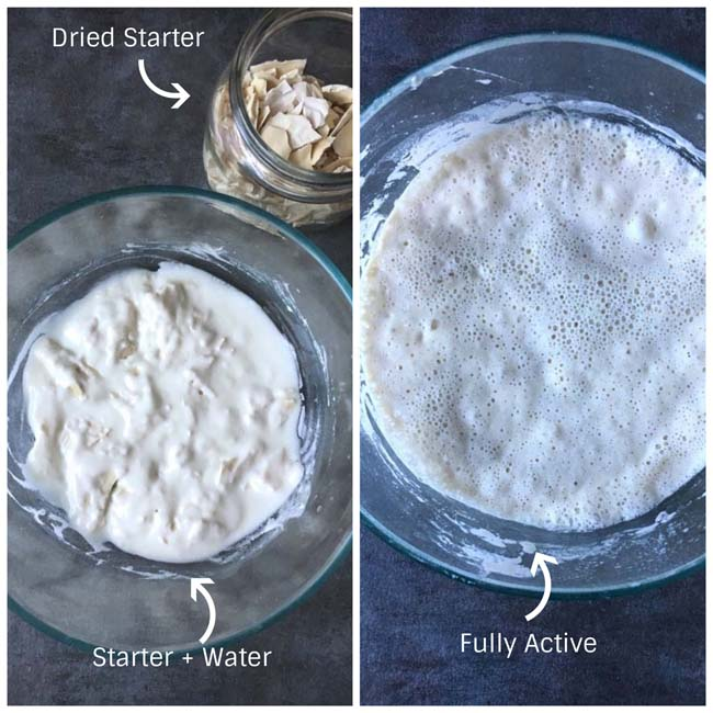 Refreshing dried sourdough starter