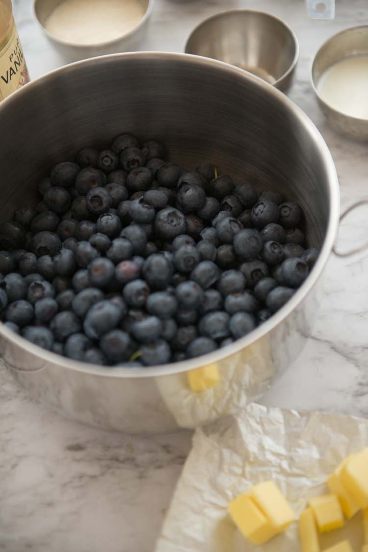 Blueberries in a bowl, with the remaining ingredients to making a cobbler set around the bowl.
